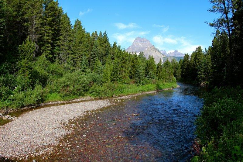 Swiftcurrent Creek and Mt. Wilbur.