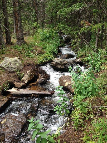 Tanglewood Creek.