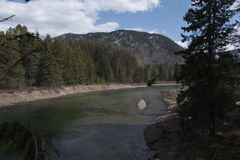 View of McDonald Creek from trail.