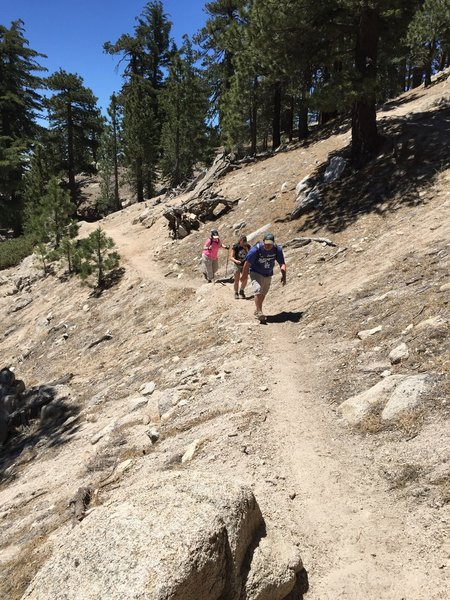 Heading up the switchbacks on Waterman Mountain