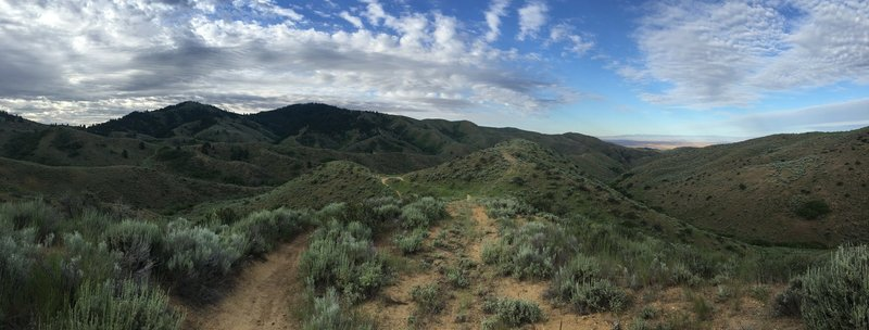 Panorama in the foothills on the Orchard Gulch Trail.