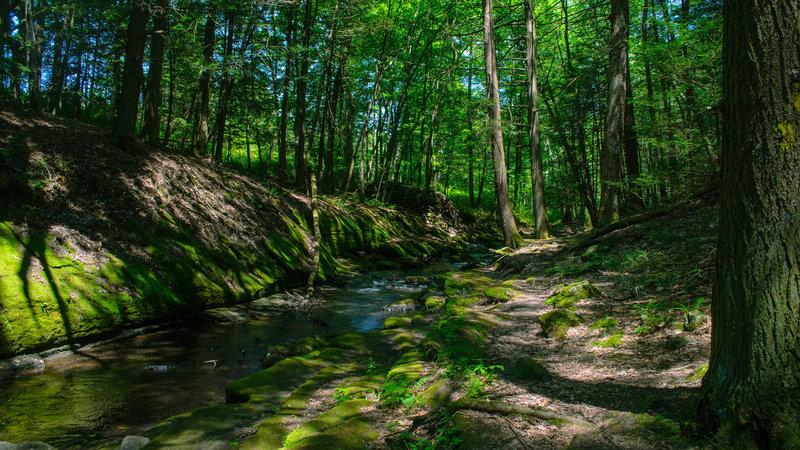 Water Gap at Van Campens Brook.