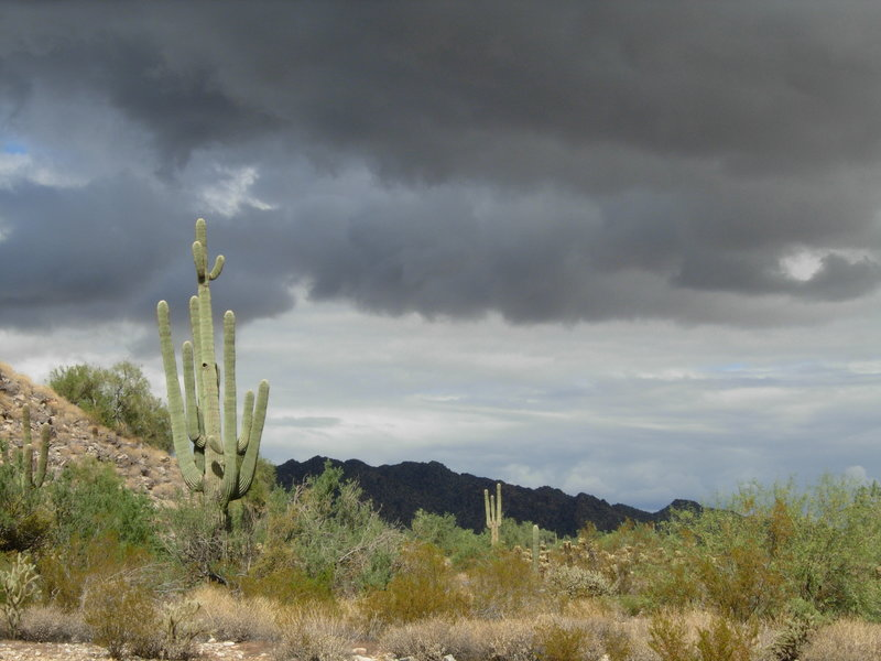 Storm clouds over White Tank Mountain Regional Park. with permission from Maricopa-County-Parks