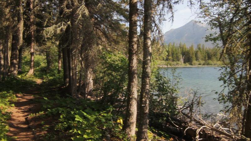 Waterton Lake Trail and bay along the lake.