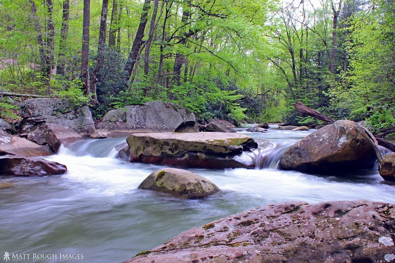 Much of the trail runs very close to beautiful sections of Decker's Creek.