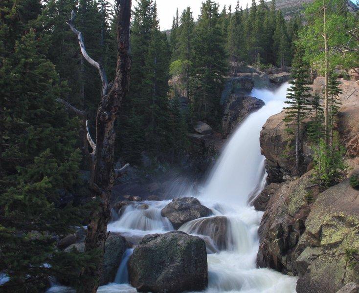 Alberta Falls in mid June.