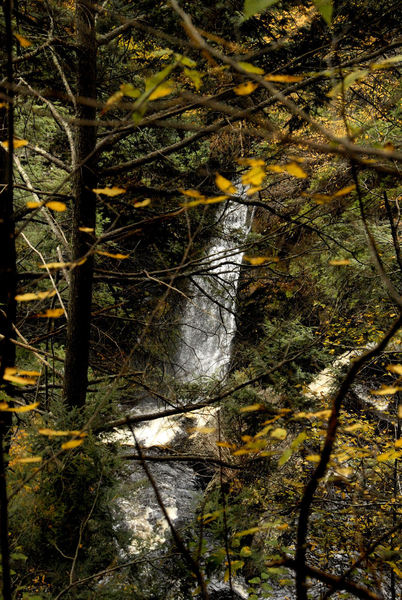 Raymondsville Falls through the autumn foliage. Photo taken and copyrighted by Hank Waxman. Used with permission.