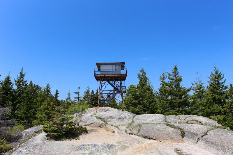 View of Beech Mtn Firetower.