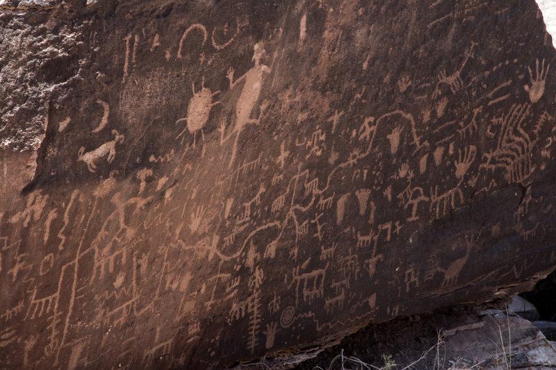 Petrified Forest petroglyphs at Newspaper Rock.
