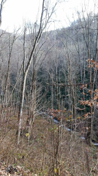 View from the switchbacks at the northern section of Hazel Creek Trail.