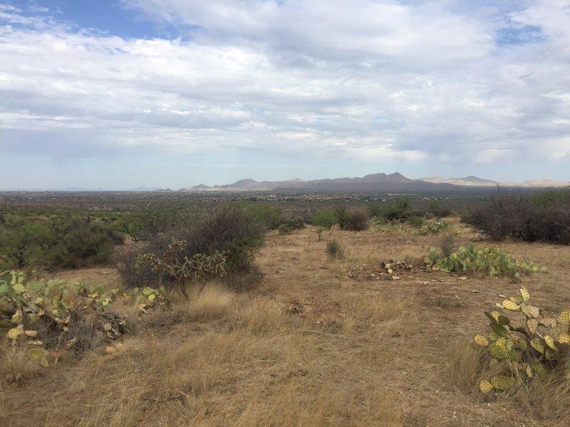 Looking west towards the Tortolitas.