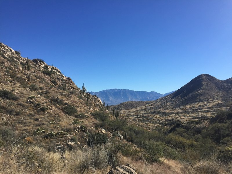 Looking towards the Catalina Mountains from atop the Tortolitas.