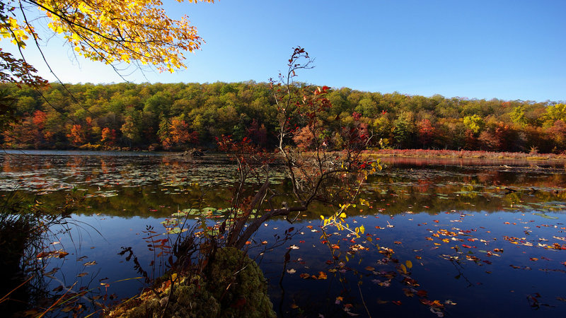Catfish Pond in the fall. with permission from Jean Drescher