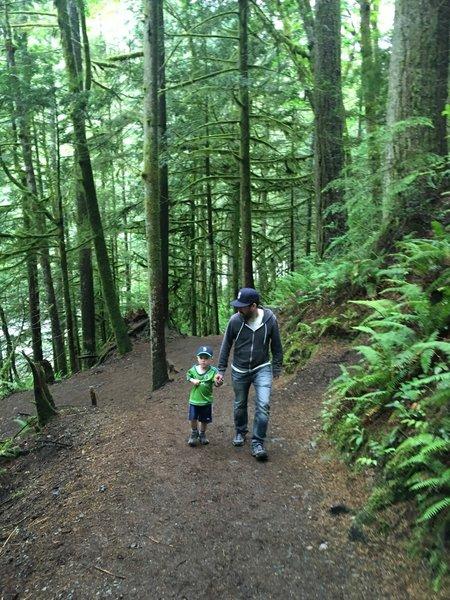 Heading up Twin Falls Trail.