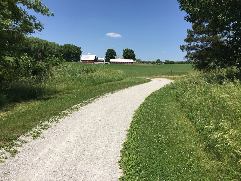 Just so you don't forget your in Iowa, there's a little bit of this kind of scenery on the North Shore Trail also.