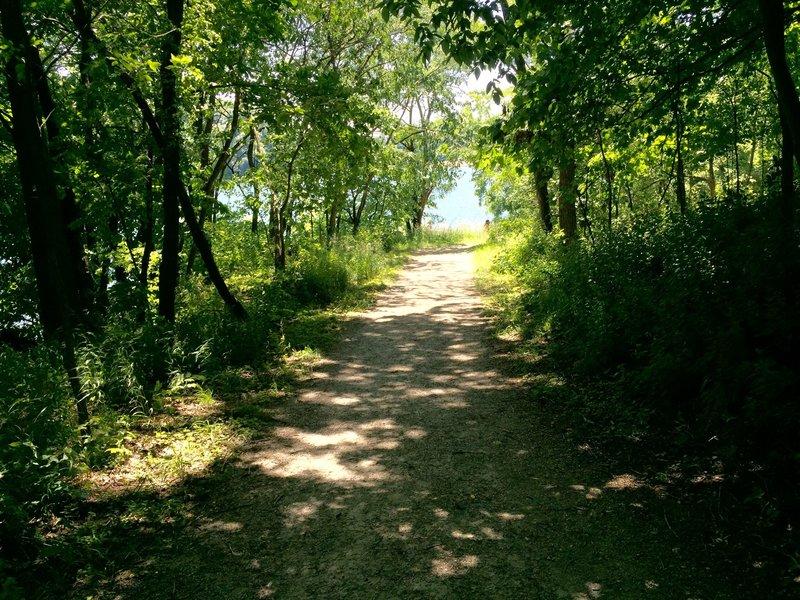 Beach to Dam Trail at Lake MacBride SP.