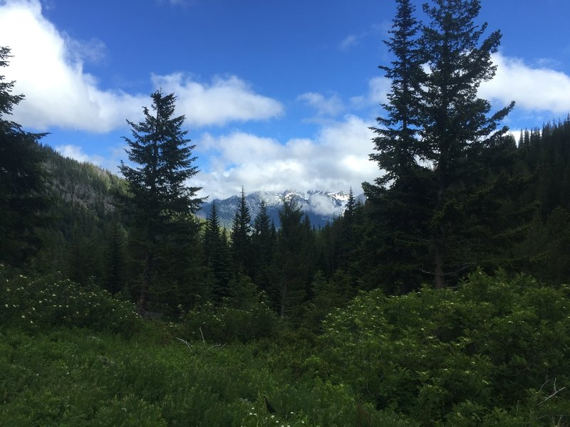 A fleeting view of the Stuart Range from the Chatter Creek meadow.