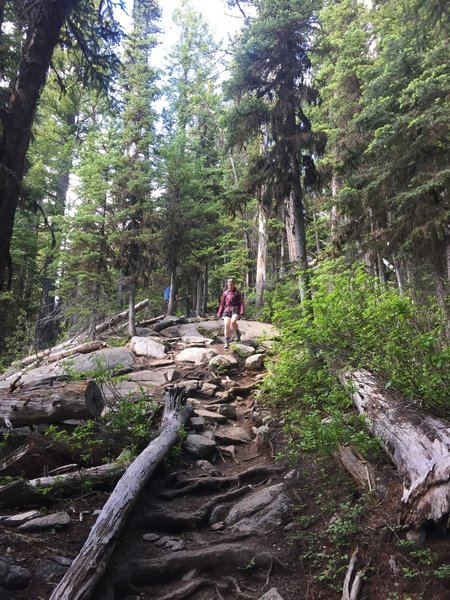 Coming down one of the steepest sections of Colchuck Lake Trail.