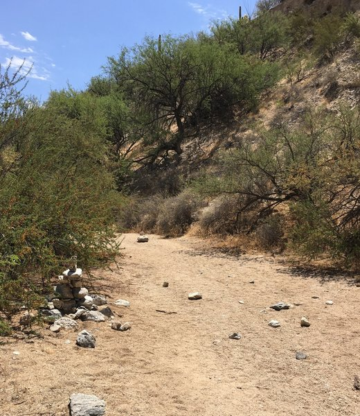 While this trail is geared for families, portion of the trail drop into a wash and signage is difficult to see.