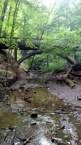 Some cool spots to offshoot from the trail to close to nature.