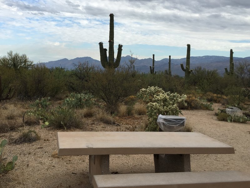 Mica View Picnic Area offers picnic tales and grills to relax after a hike.
