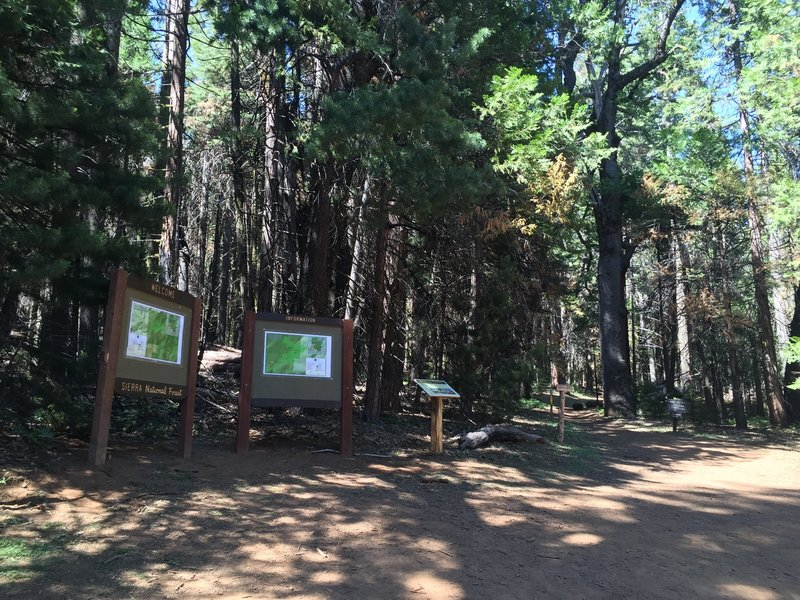 Trailhead for Chimney Tree trail and Graveyard of the Giants Trail