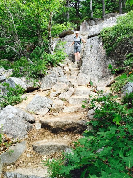 Coming down the Acadia Mountain Trail.