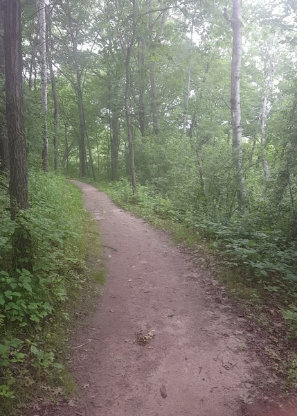 Photo of the trail.
