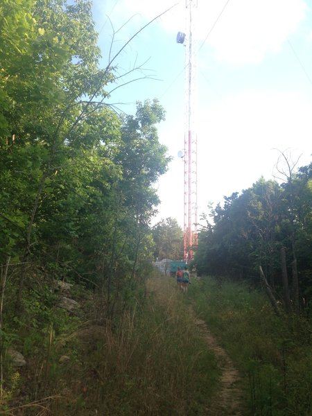 View of the Tower toward the top of the switchback on Varnedoe.