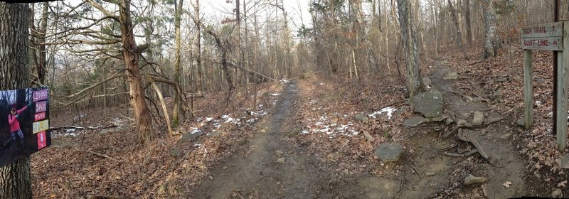 Lindsey Corner (Intersection of High and Bluffline Trails)