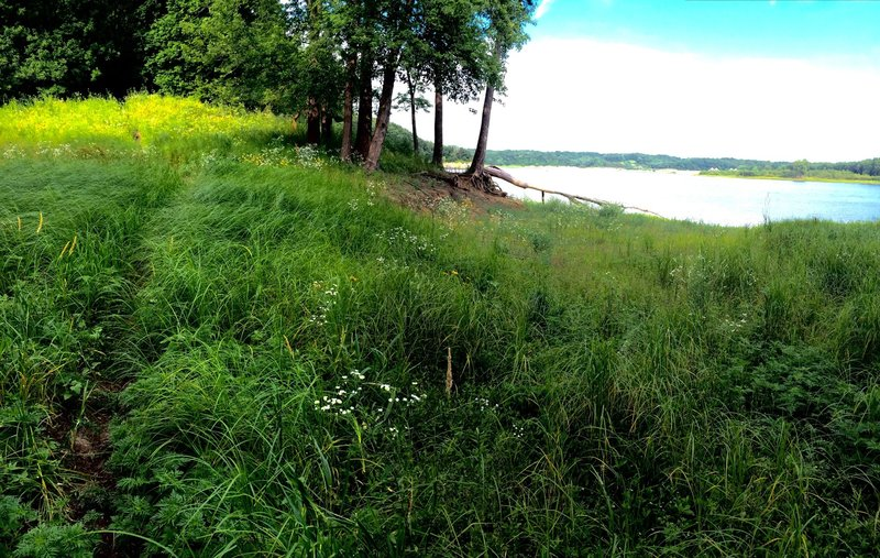 The Bird Bling Trail along the shore of the Coralville Reservoir.