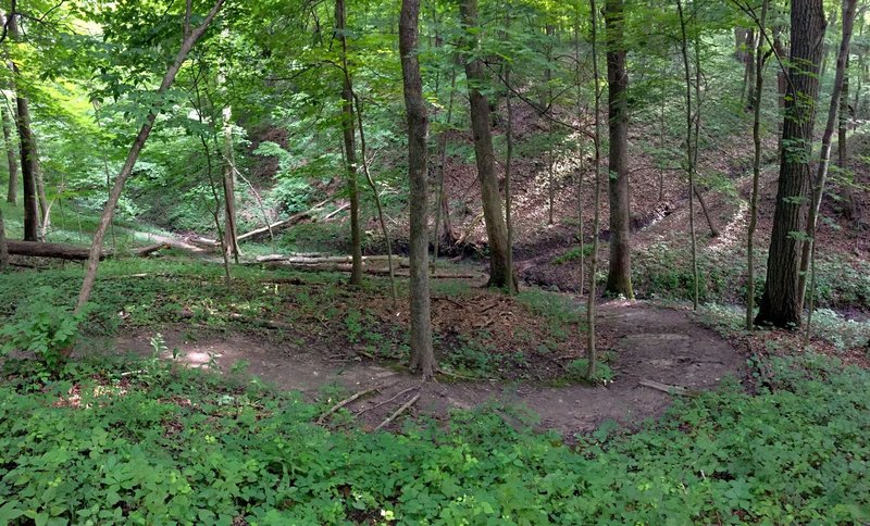 Switchback near the bottom of Hawk Ravine.