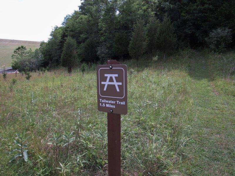 Trailhead, cut grass leads to beginning of  trail.