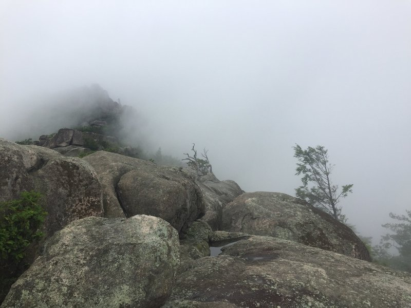 Viewing Old Rag Summit from the first peak on Old Rag on a foggy morning.