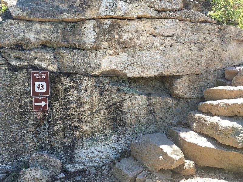 Where Rim Rock and the Dam Trail intersect.