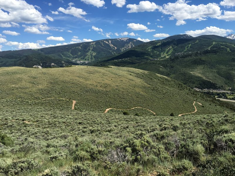 View of the Saddle Ridge Trail from the Aspen Grove connector trail off of Our Backyard Trail.