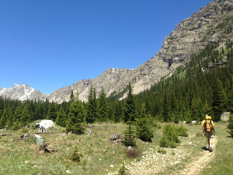 Blue sky day on Buchanan Pass Trail.
