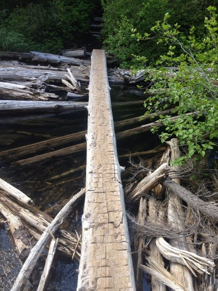 View from far side of log crossing.