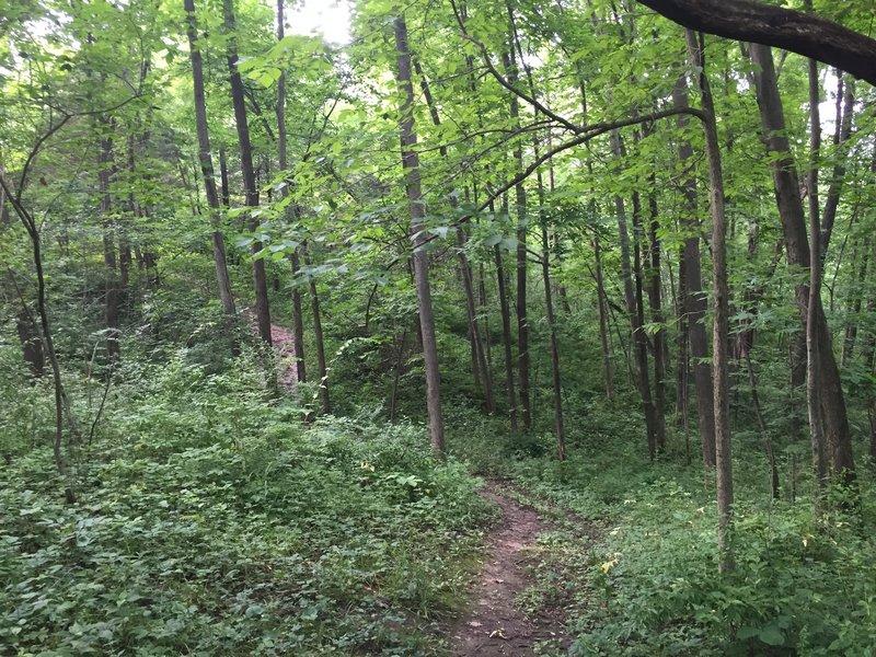 Prairie View Nature Trail.
