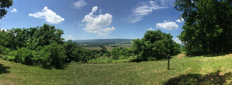 Panorama shot from the shady bench.