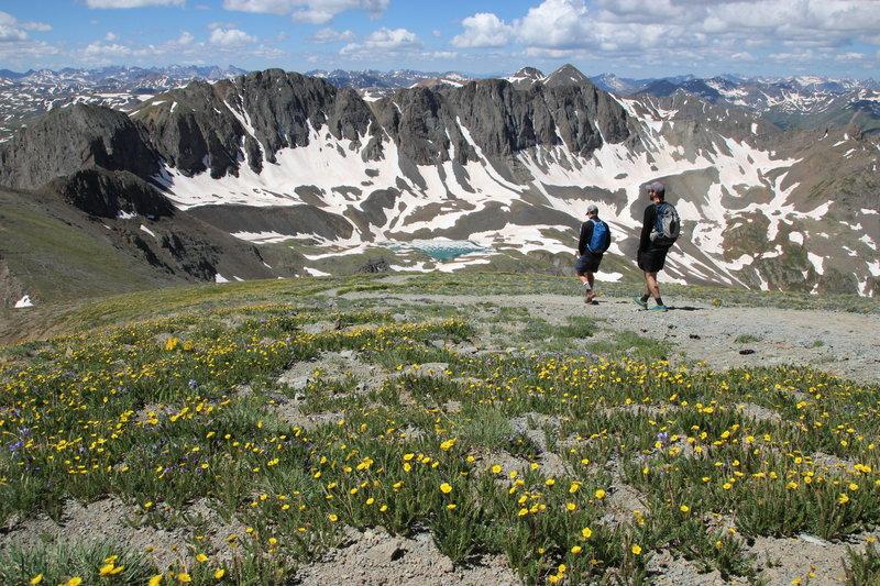 Descending Handies Peak through the flowers with stunning views of the American Peaks.