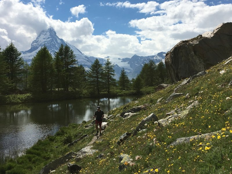 Flowers, a lake, and the Matterhorn. Pretty nice.