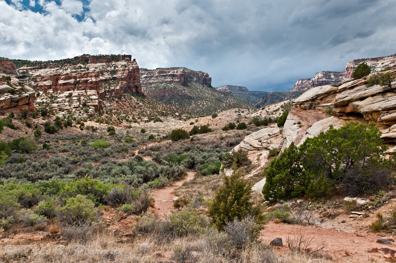 Turning onto the start of No Thoroughfare Canyon Trail. with permission from Peter B. Pearman