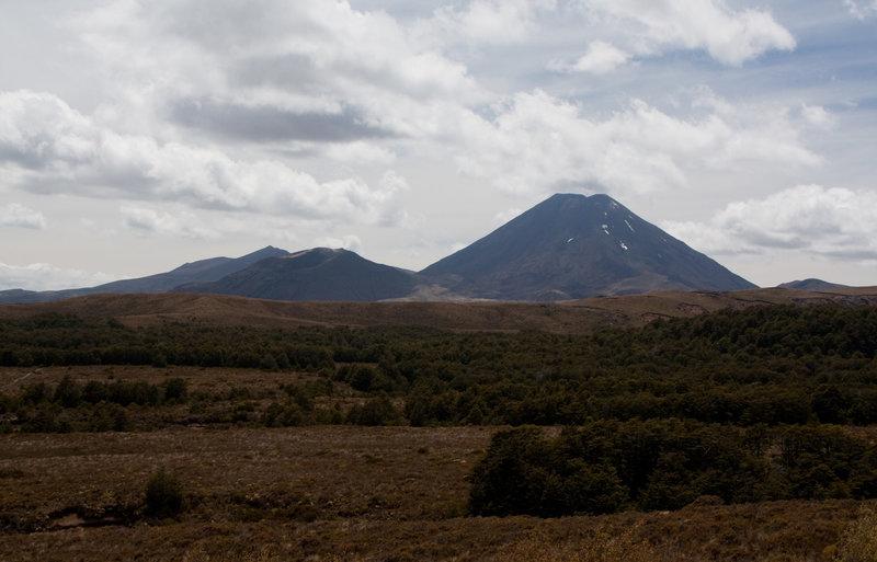 View of Ngauruhoe from the lower Taranaki Falls Track.
