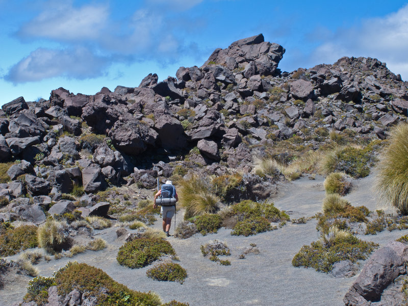 Hiking on the way to Tongariro.