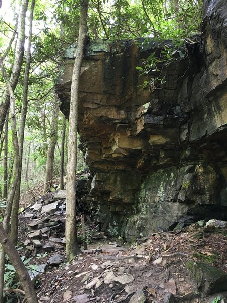 Rock overhang.