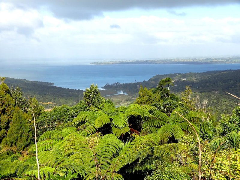 Views from trail start toward Manakau Harbour.