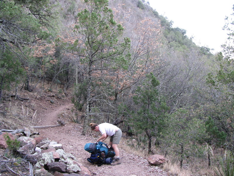 Heading up the Colima Trail.