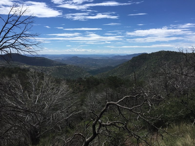 View from Limpia Chute Trail.