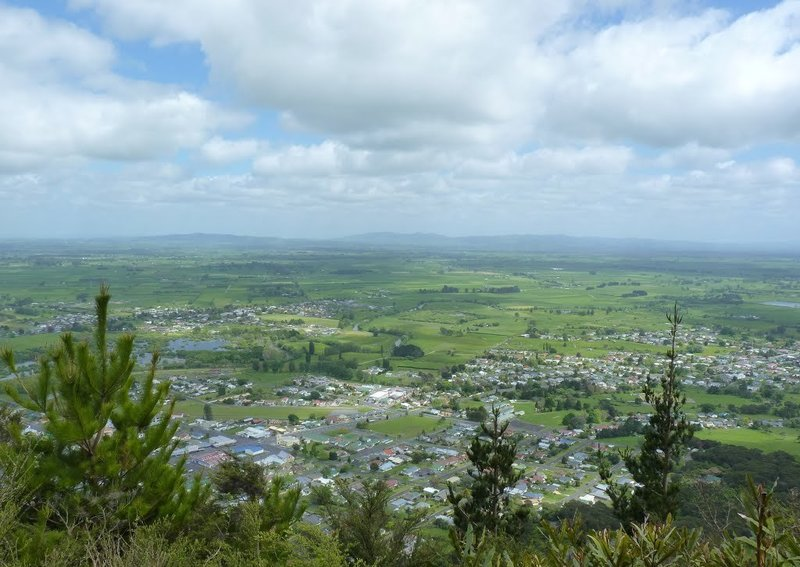View of Te Aroha town from one of the lookouts.